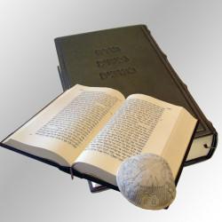 """תנ""""ך  - מלכיאור"""