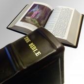 """תנ""""ך באנגלית """"בינוני"""" - מלכיאור"""