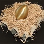 ביצת זהב - ענת בסנטה